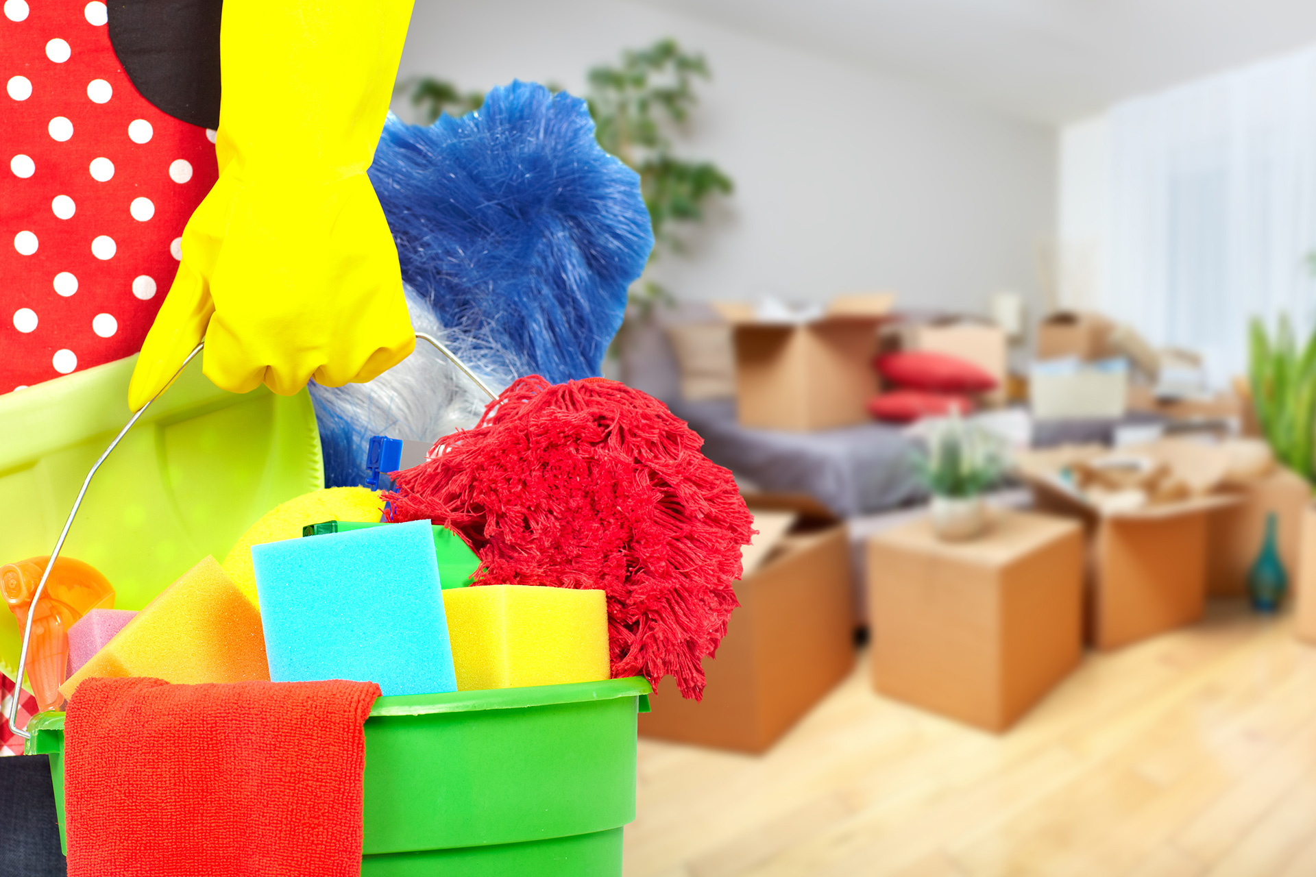 Move In-Move Out Cleaning